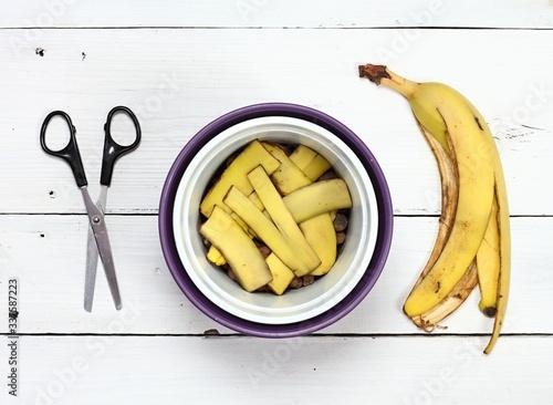 Fotomural Banana peel good for plant fertilization