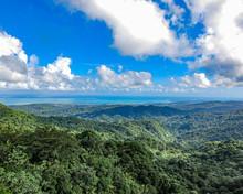 Beautiful View Of El Yunque Na...