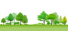 緑が生い茂る木の風景
