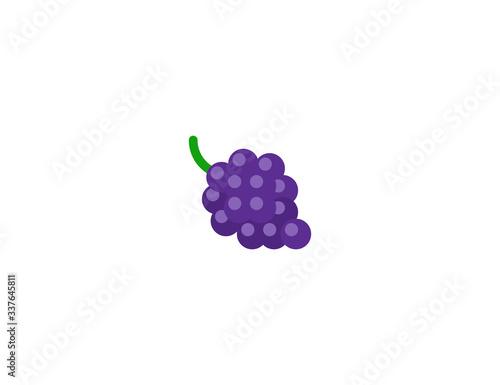 Grape vector flat icon Canvas