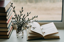 Willow Branches And Books On T...