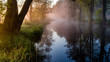 Barwny poranek nad rzeką Supraśl. Mgista Dolina Supraśli. Puszcza Knyszyńska, Podlasie, Polska
