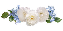 White Roses And Light Blue Plumbago Isolated On White Background. Floral Arrangement, Bouquet Of Flowers. Can Be Used For Invitations, Greeting, Wedding Card.