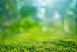canvas print picture - natural grass background with blurred bokeh and sun