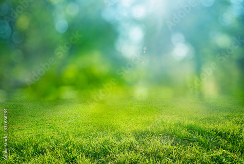 natural grass background with blurred bokeh and sun Canvas Print