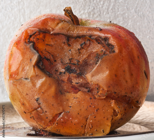 Fototapeta Zgniłe jabłko obraz