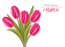 Red Tulips Realistic Vector, W...