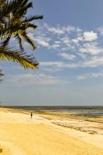 View Of White Sand Beach And B...