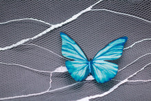 The Fabric Butterfly On The La...
