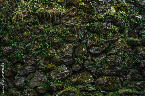 Photo Wall of rocks covered by moss