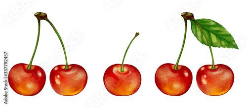 さくらんぼ cherry のイラスト
