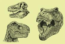 Graphical Green Tyrannosaurus ...