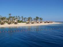 Egypt Beach Shore Palm Trees Blue Sky