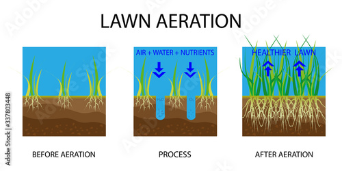 Lawn aeration Canvas Print