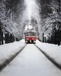 Snowy tram in Prague, Czech Republic