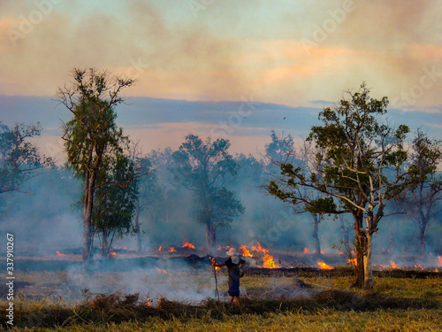 Fototapety, obrazy: Rear View Of Person Standing Against Fire On Field During Sunset
