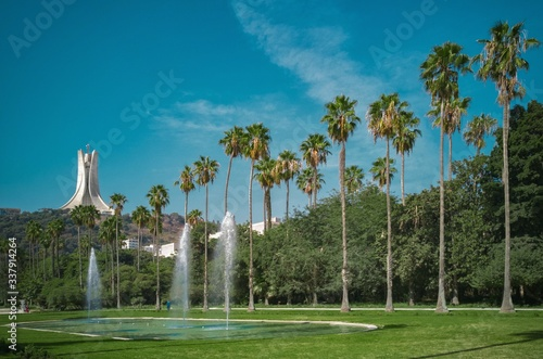 Photo Scenic View Of Palm Trees Against Blue Sky
