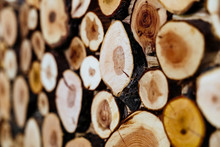 Wood Stock Background Stacked Firewood Pattern Copy Space