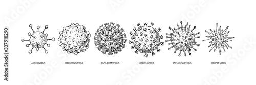 Set of hand drawn viruses types (coronavirus, papillomavirus, herpes, influenza, hepatitis, adenovirus) with names in sketch style Canvas Print