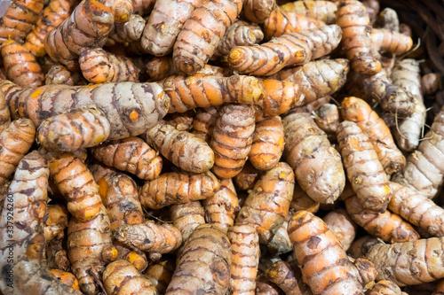 Turmeric root spice for healthy eating - Curcuma longa Fototapeta