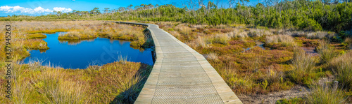 Fotomural Scenic boardwalk passing through coastal wetlands in Victoria, Australia