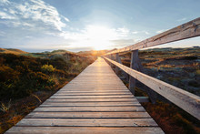 Deserted Wooden Boardwalk Leading Away Through Coastal Dunes Vegetation Towards A Glowing Cloudy Sunset Sky.
