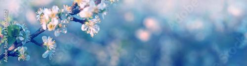 Fototapeta Blurred floral background