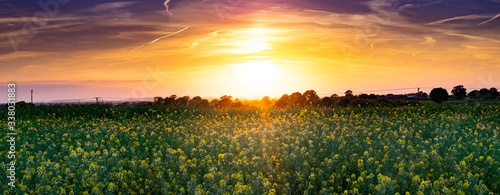 Fotografiet Crops Growing On Field Against Sky During Sunset