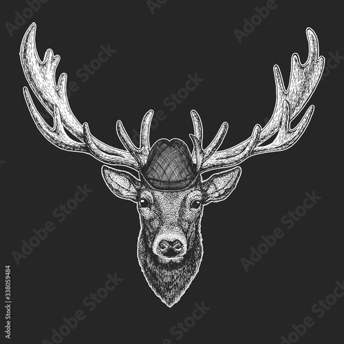 Obraz Deer portrait. Oktoberfest. Tirol traditional hat. Beer festival. Head of wild animal. - fototapety do salonu