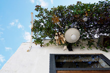 White Building Facade With Greenery, Lamp And Bamboo Sound Instrument Above The Door From Unesco World Heritage Trulli Of Alberobello In Italy