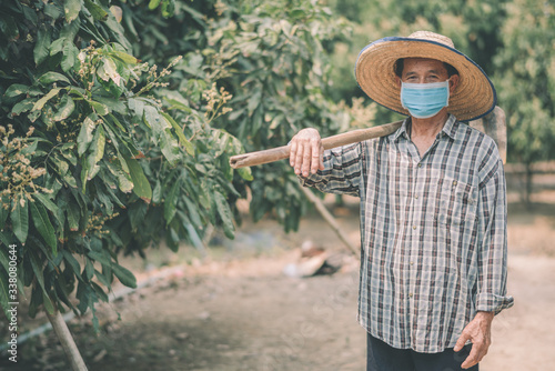 Fototapeta Asian farmers wear masks to prevent outbreaks of corona virus (COVID-19) and air pollution Pm2.5 on the farm obraz