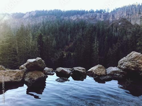 Obraz Scenic View Of Rocks In Forest - fototapety do salonu