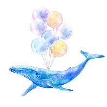 Big Blue Whale And Air Balloon...