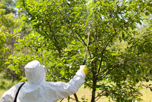 Spraying Toxic Pesticides In F...