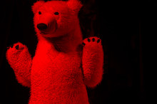 Close-up Of Red Teddy Bear Aga...
