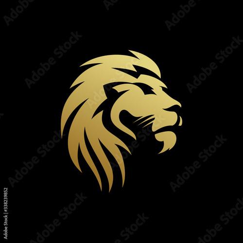 Fototapety, obrazy: Lion logo Design vector template Illustration