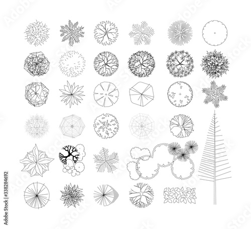 Fototapeta Top view and side view, set of graphics trees elements outline symbol for architecture and landscape design drawing. Vector illustration obraz