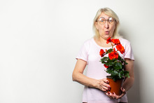 Portrait Of An Old Friendly Woman With A Surprised Face In A Casual T-shirt And Glasses Holds A Room Flower On An Isolated Light Background. Emotional Face. Concept Of Plant Care, Home Garden