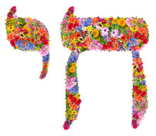 Chai  Figures Prominently In Modern Jewish Culture From Flowers Isolated