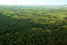 Aerials Of Lewa Conservancy Showing Fence Line Of Protected Areas And Encroaching Farming In Kenya, Africa