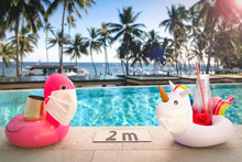 Inflatable Pool Toys At Tropic...