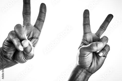 Obraz main, isolé, blanc, poing, doigt, bras, humain, geste, pouce, signes, main, affaires, poignée de main, gens, doigt, symbole, un, noir, puissance, cale, deux, amitié, corps, peau, trois, duel, esthétiq - fototapety do salonu