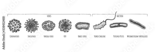 Photo Hand drawn set of different virus and bacteria.