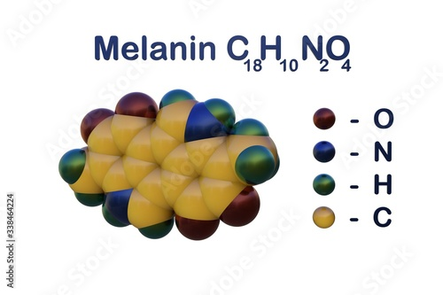 Fotografiet Structural chemical formula and space-filling molecular model of melanin, a skin pigment that gives human skin, hair and eyes their color