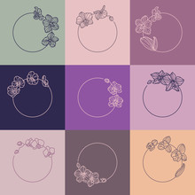 Set Of Orchid Flower Frames And Monogram Concept In Minimal Linear Style. Vector Floral Logo