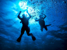 Underwater Photo Of Scuba Dive...