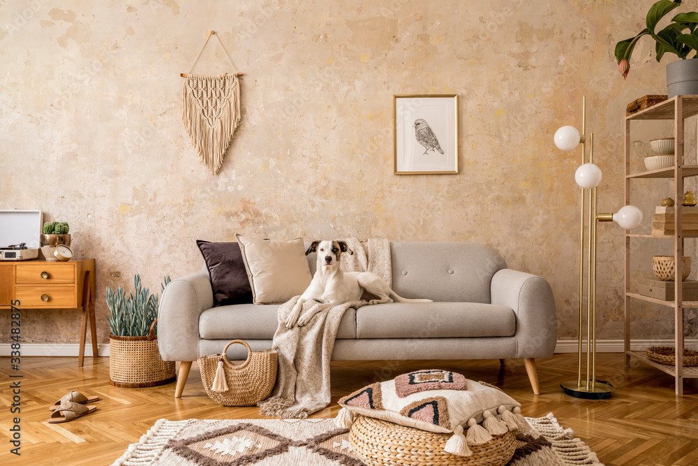 Fototapeta Stylish scandi compostion at living room interior with design sofa, commode, shelf, carpet, rattan pouf, plants, picture frame, macrame, personal accessories and dog lying on the couch.
