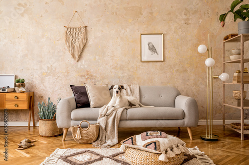 Papel de parede Stylish scandi compostion at living room interior with design sofa, commode, shelf, carpet, rattan pouf, plants, picture frame, macrame, personal accessories and dog lying on the couch