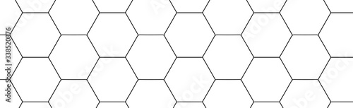 Fotografie, Obraz Hexagon on a white background