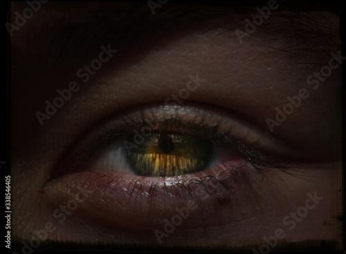 Obraz na plátně Detail Shot Of Green Eye With Lashes